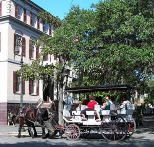 carriage_tours_savannah